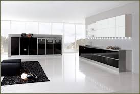 canadian kitchen cabinet manufacturers canadian kitchen cabinet manufacturers 75 beautiful graceful doors