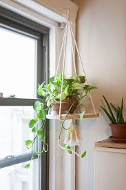 image result for how to hang plants earthy bedroom ideas