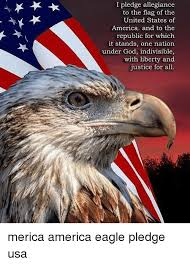 America Eagle Meme - 25 best memes about america eagle america eagle memes