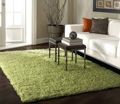 Costco Carpet Runners by Coffee Tables Contemporary Round Area Rugs Rugs Runner Sisal