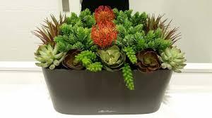 succulent arrangement lechuza window sill planter plantopia