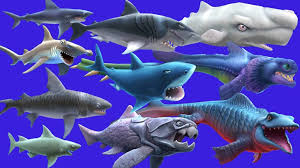 download game hungry shark evolution mod apk versi terbaru hungry shark evolution mod coins gems v5 4 4 apk on android