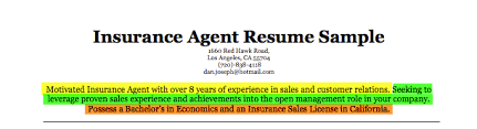 Insurance Sample Resume by Insurance Agent Resume Samples Visualcv Resume Samples Database