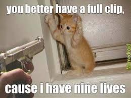 Ninja Meme - ninja cat meme by crazyguitarman23 memedroid