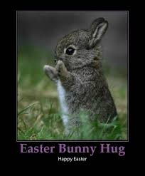 Funny Easter Memes - best funny easter memes and cute pics