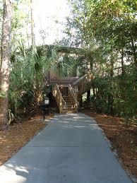 Treehouse Villas At Disney World - ryan u0027s first trip to walt disney world