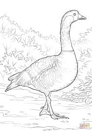 nene coloring page free printable coloring pages