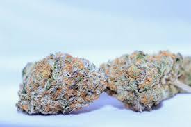 Wedding Cake Kush Online Menu 805 Top Shelf Medical Marijuana Delivery Slo County
