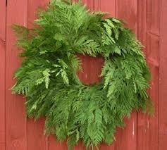 live christmas wreaths cedar christmas wreaths