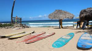 surfboard jeep punta cana just safari jeep safari tours jeep safari