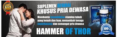 daftar harga hammer of thor yang asli terbaru