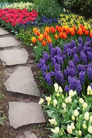 Gardening Ideas Pinterest Best 25 Garden Ideas On Pinterest Flowers