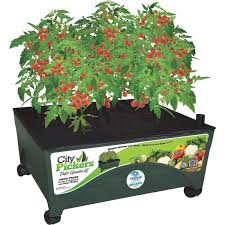 Indoor Vegetable Garden Kit by City Pickers Patio Garden System 2340 Do It Best