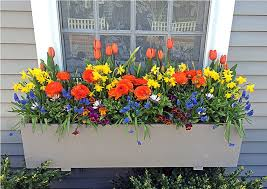 Wooden Window Flower Boxes - diy window flower boxes u2014 tedx designs the most beautiful ideas