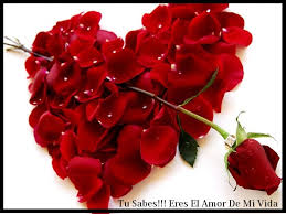 bonitas de rosas rojas con frases de amor imagenes de amor facebook fotos de rosas rojas de amor con frases y poemas para tu enamorado