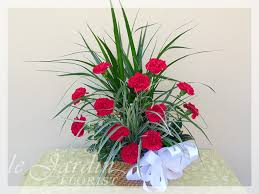 funeral plants planter with live plants and fresh cut carnations le jardin florist