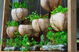 six creative eco friendly planters planterra