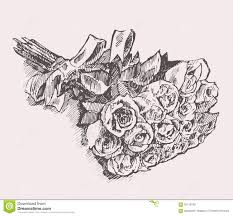 sketch a bouquet of roses stock illustration image of bunch