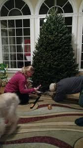 david pittman u0027s christmas tree farm home facebook