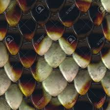 closeup view of snake scales in brown color stock photo picture