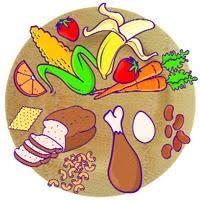 balanced meals better behavior adhd treatment adhd and children s