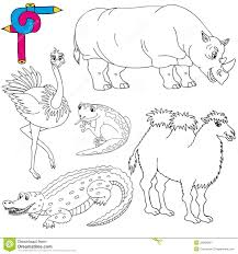 coloring image wild animals 02 royalty free stock photography