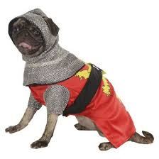 Target Dog Halloween Costume 30 Asta Halloween Costumes Images Pet Costumes