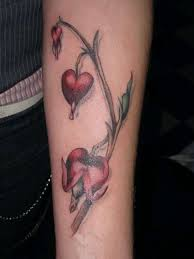 bleeding heart plant tattoo bleeding hearts ink ideas
