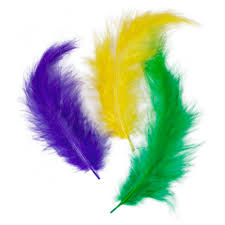10g craft feathers mardi gras mix mardigrasoutlet