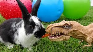 pet dinosaur loves pet bunny