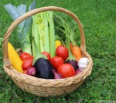 easy homemade garden vegetable soup recipe