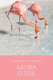 best 25 flamingo beach ideas on pinterest aruba pictures