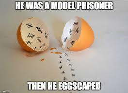 Egg Meme - egg imgflip