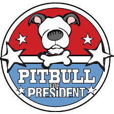 pitbull for president 2012 angry squirrel studio