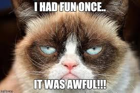 Grumpy Cat Meme I Had Fun Once - grumpy cat not amused meme imgflip