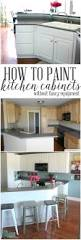 Updating Kitchen Cabinets On A Budget 137 Best Neutral Kitchen Inspiration Images On Pinterest Kitchen