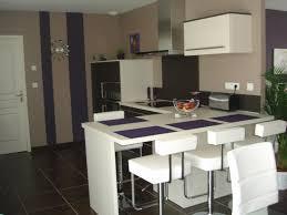 cuisine brun comptoir lisse en granit noir armoire de cuisine brun foncé pichet
