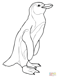 penguin coloring pages pdf click tux for toddlers club christmas