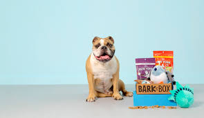 Design Your Own Dog Toy Boxes by Bark