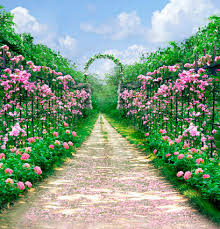 flowers garden route scenic for wedding background props digital