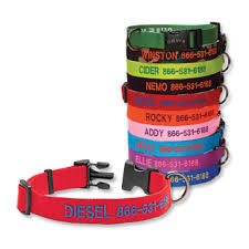 personalized collars personalized adjustable collar orvis