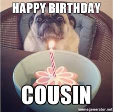 Happy Birthday Pug Meme - 20 best happy birthday memes for your favorite cousin sayingimages com