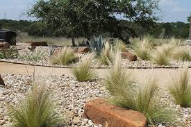 Texas Landscape Plants by Austin Native Landscaping U2013 Xeriscape Design Installation