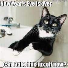 Happy New Year Cat Meme - funny stuff page 10