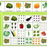square foot vegetable garden layout widltrb decorating clear