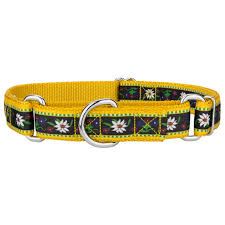 designer ribbon buy edelweiss designer ribbon martingale dog collar online