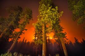 California Wildfires Rocky Fire by The Hellish Beauty Of California U0027s Wildfires Wired
