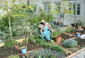 beautiful home vegetable gardens beautiful best vegetable garden