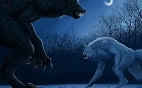 imagenes de fondo de pantalla lobos 155 hombre lobo fondos de pantalla hd fondos de escritorio