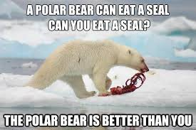 Polar Bear Meme - a polar bear can eat a seal can you eat a seal funny bear meme picture